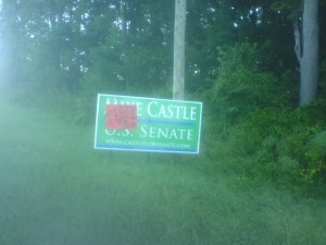 A vandalized campaign sign.